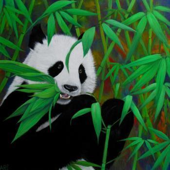 panda.jpg 349×349 pixels
