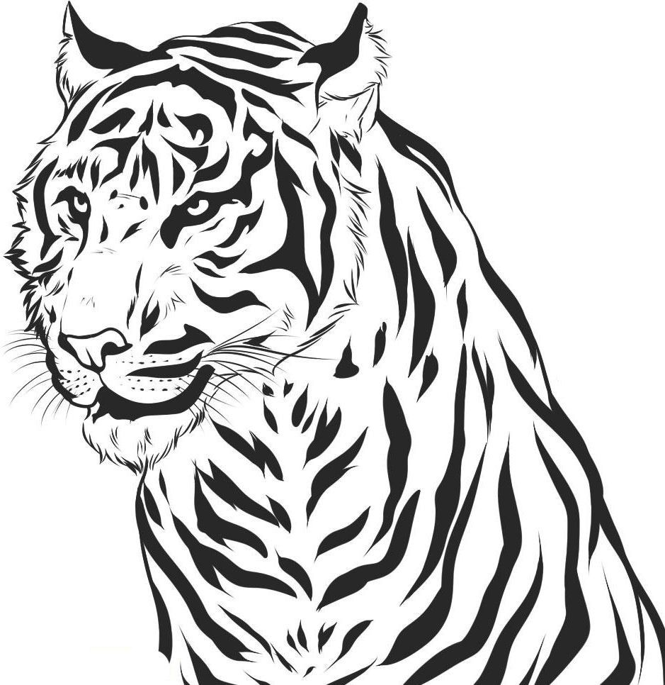 Tiger Head Coloring Sheet For Kindergarten - PeepsBurgh