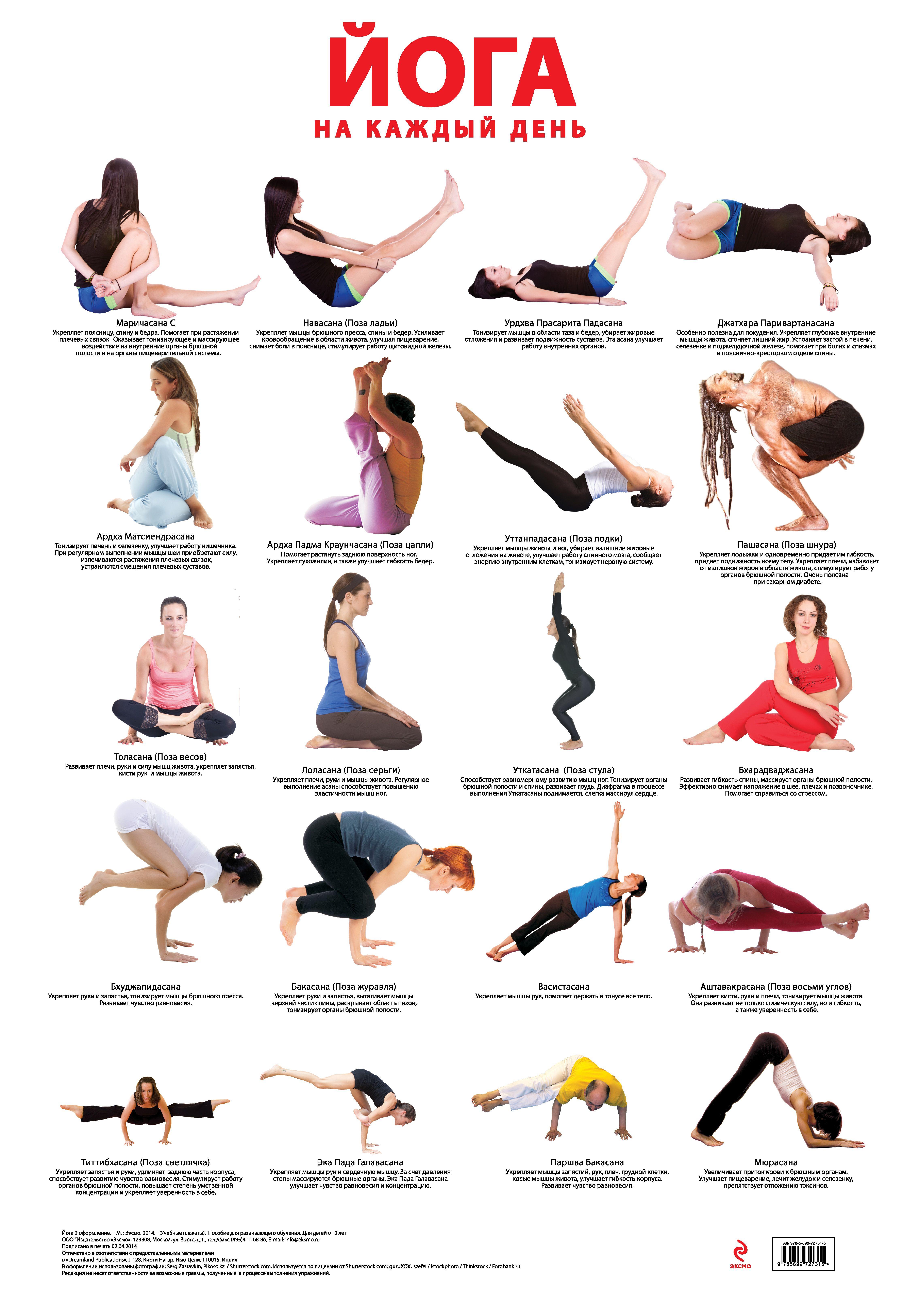 Основные упражнение в йоге картинки