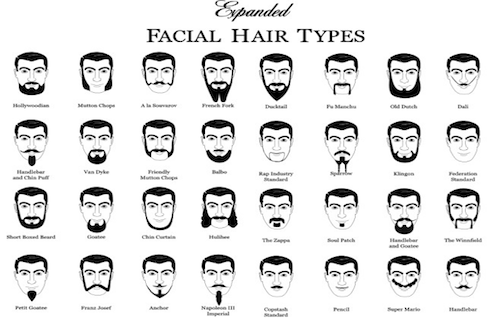 facial hair - Google Search | Beards | Pinterest | Facial hair ...