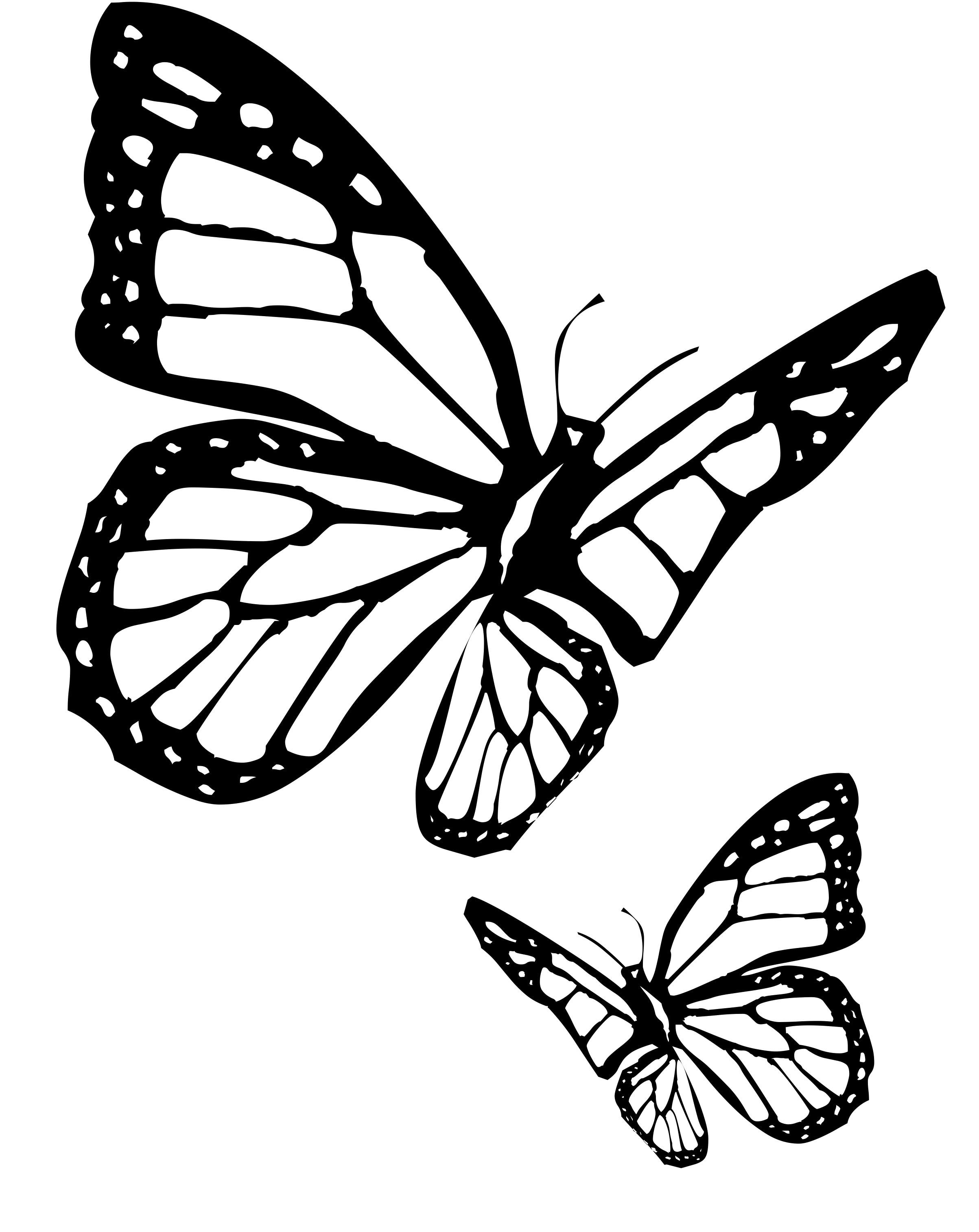 Two Butterfly Dark Coloring Pages In