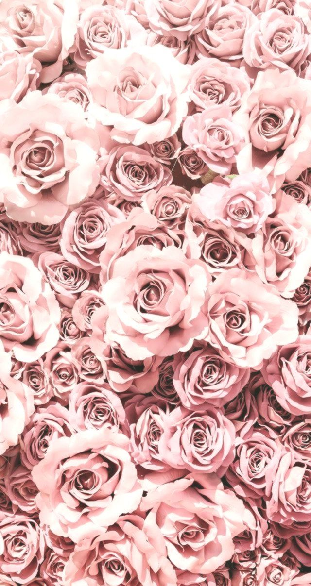 Best Wallpaper Backgrounds 2019 Wallpaper Phone Iphone Android Simple Aesthetic Flow Rose Gold Aesthetic Flower Phone Wallpaper Rose Flower Wallpaper