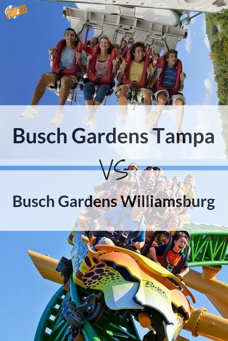 How Busy Is Busch Gardens On Thanksgiving