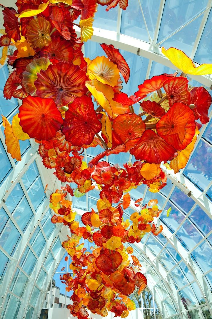 Dale Chihuly 39 S Vibrant Glass Sculpture Garden Dale Chihuly
