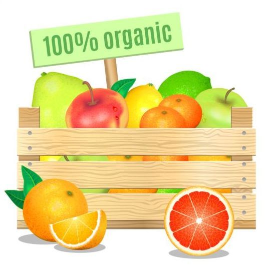 Organic fruit vector design - https://www.welovesolo.com/organic-fruit-vector-design/?utm_source=PN&utm_medium=wesolo689%40gmail.com&utm_campaign=SNAP%2Bfrom%2BWeLoveSoLo