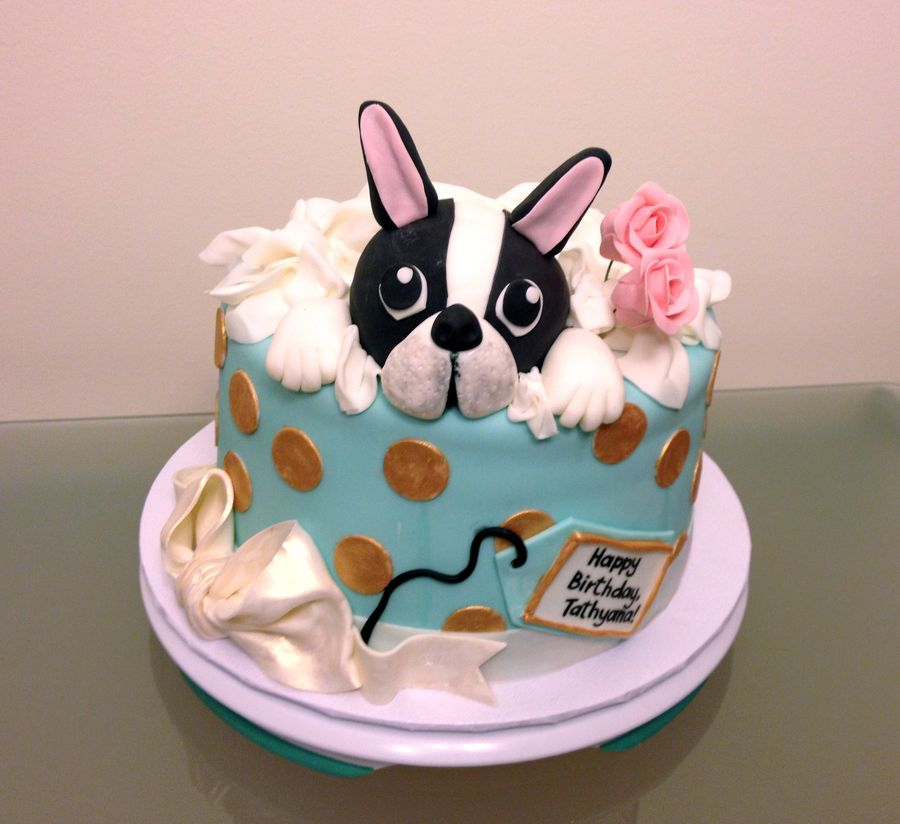 Boston Terrier Gift Box Cake Chocolate Butter With Raspberry Mousseline Buttercream Filling And Neoclassic