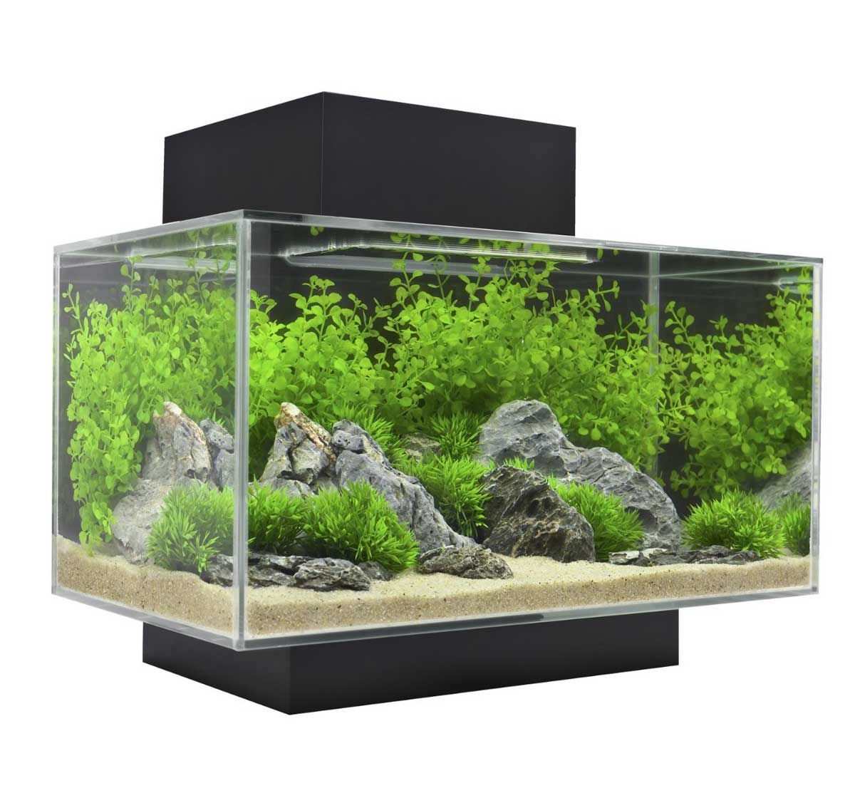 Fish aquarium price india - Buy Online Fluval Edge Aquarium Set Led Black 23ltr At Online Fish Store India Http