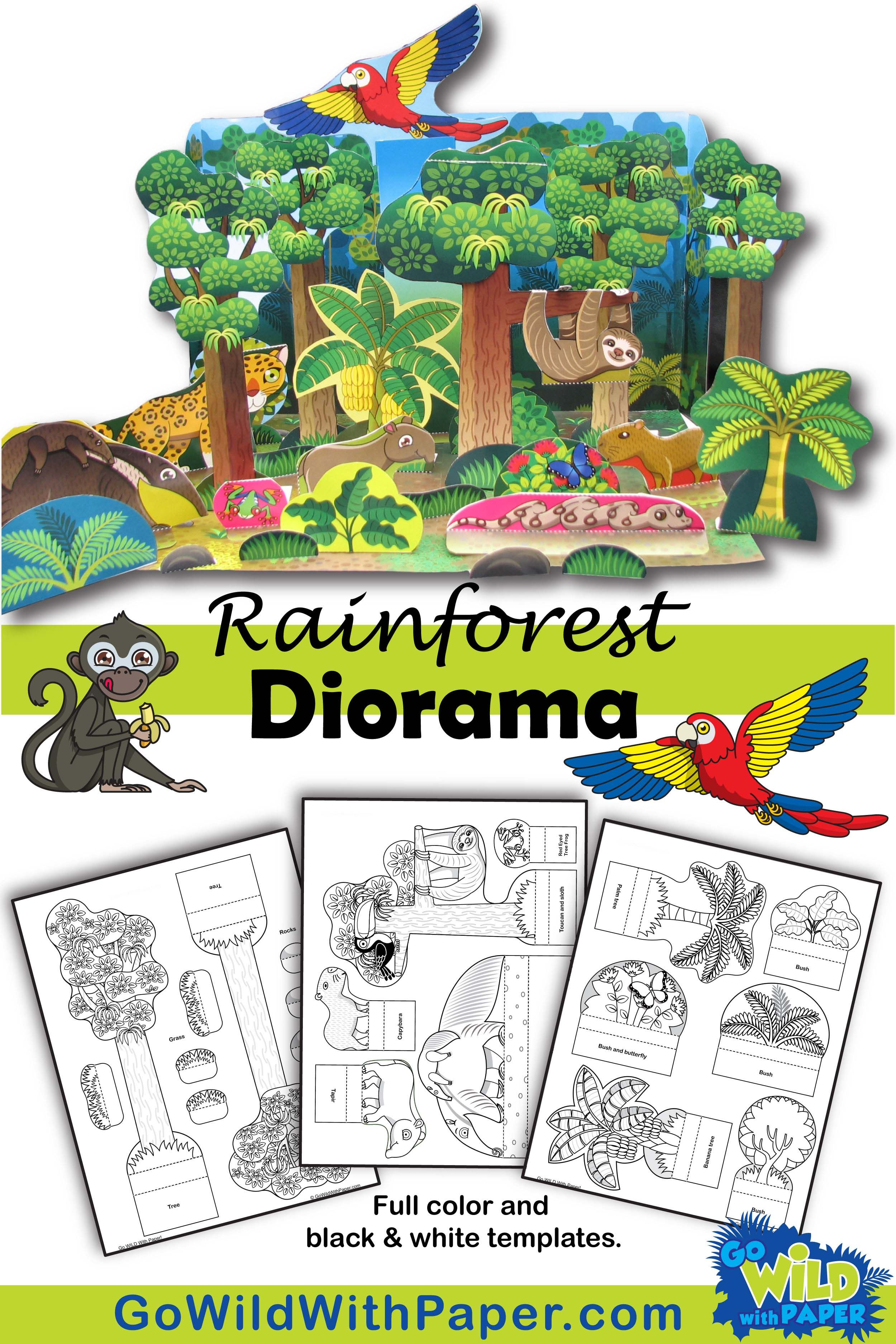 Rainforest Diorama Project - Animal Habitat Activity