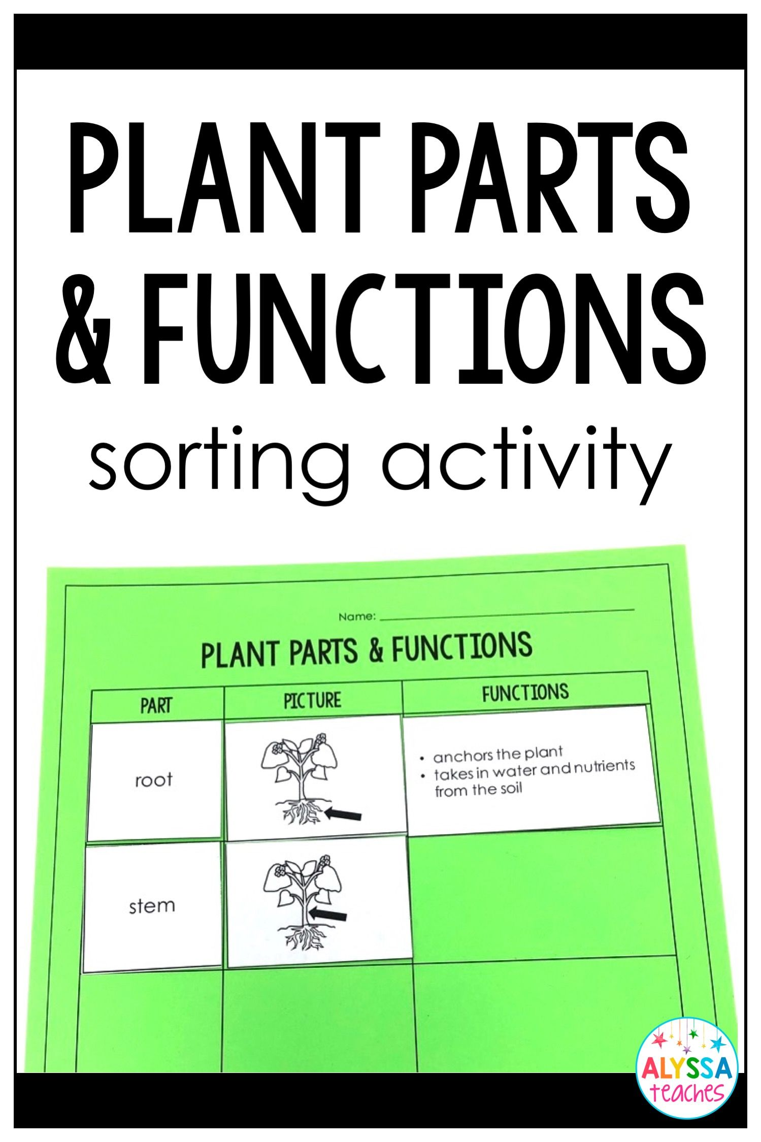 Plant Parts And Functions Sorting Cards And Worksheet