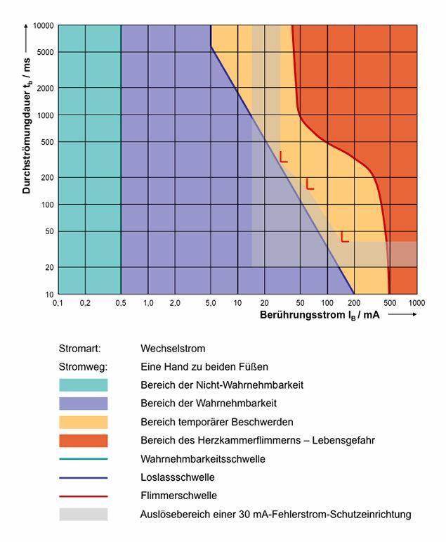 30 Arbeitsblatt Antworten Auf Diagramm Und Datenanalyse | Coloring ...