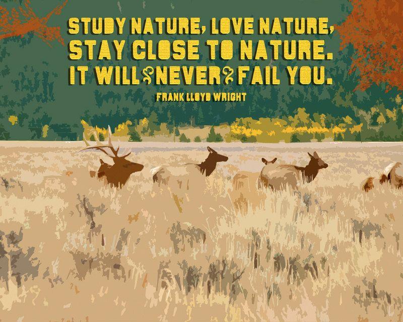 Study Nature, Love Nature 8x10 Matted Giclee Art Print. $ 25.00, via Etsy.