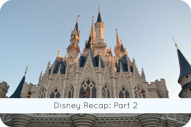 Pretty Well Organized: Disney Recap: Part 2!