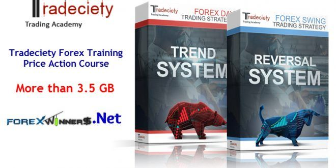 Tradeciety Forex Training Price Action Course Winners Https Forexwikitrading