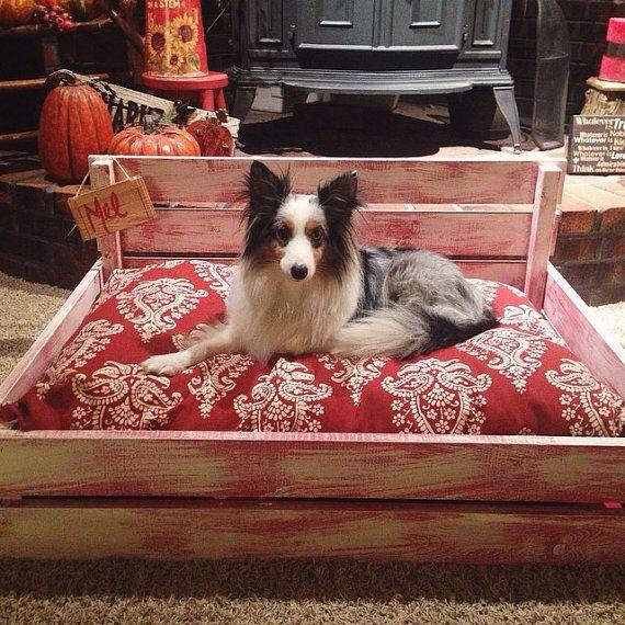 Fresh Pet Bed Insert Inspiration