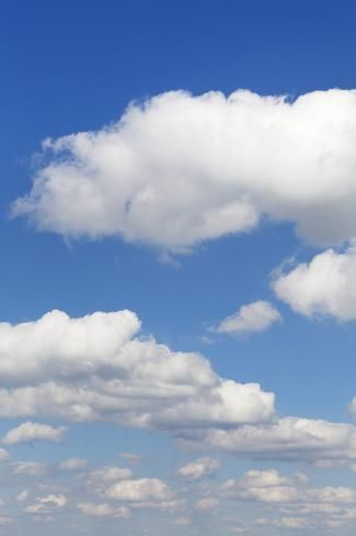 Photographic Print: Cumulus Clouds, Blue Sky, Summer, Germany, Europe by Markus : 24x16in
