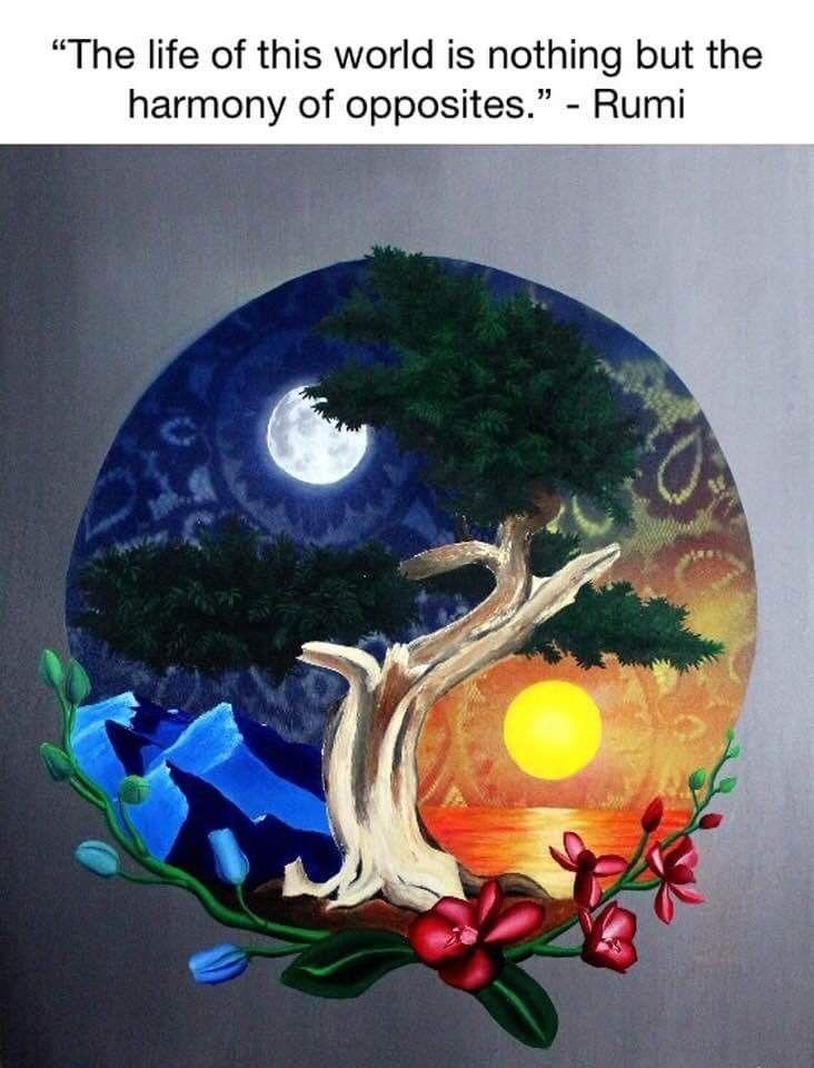 Park Art|My WordPress Blog_Yin Yang Quotes And Sayings