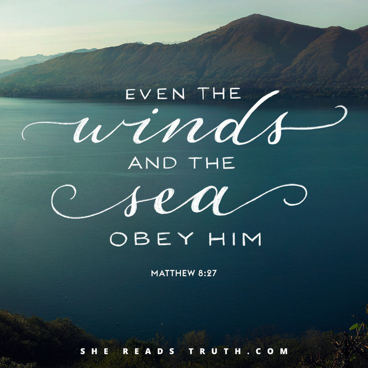 Bible Verses Quotes About Life: My 'Go To' Scripture!