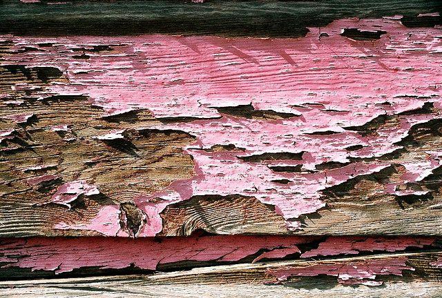 L Y Pink Paint