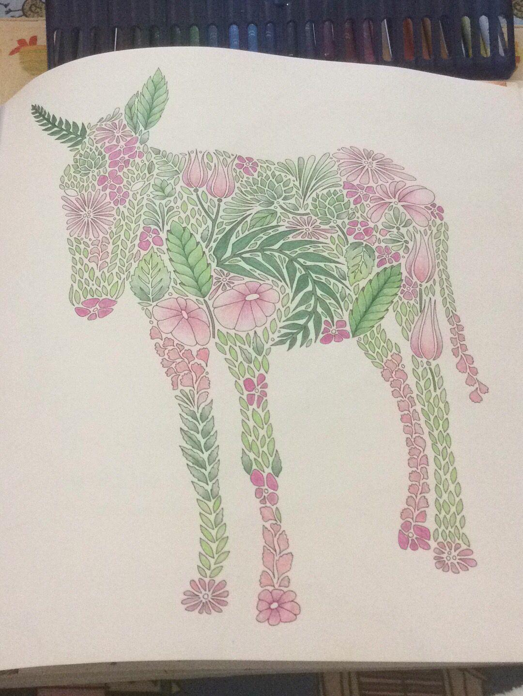 Donkey ColouringColoring BooksDonkeyAnimal KingdomVintage