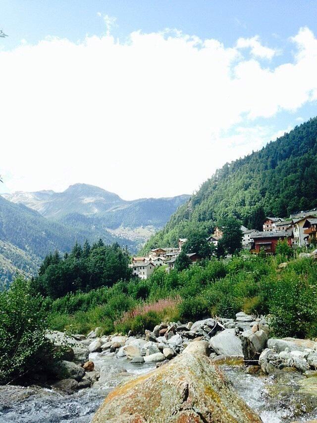 #summer in #mountain Bella foto di uno scorcio di Olmo ( provincia di #Sondrio ) pic by Valentina grazie!
