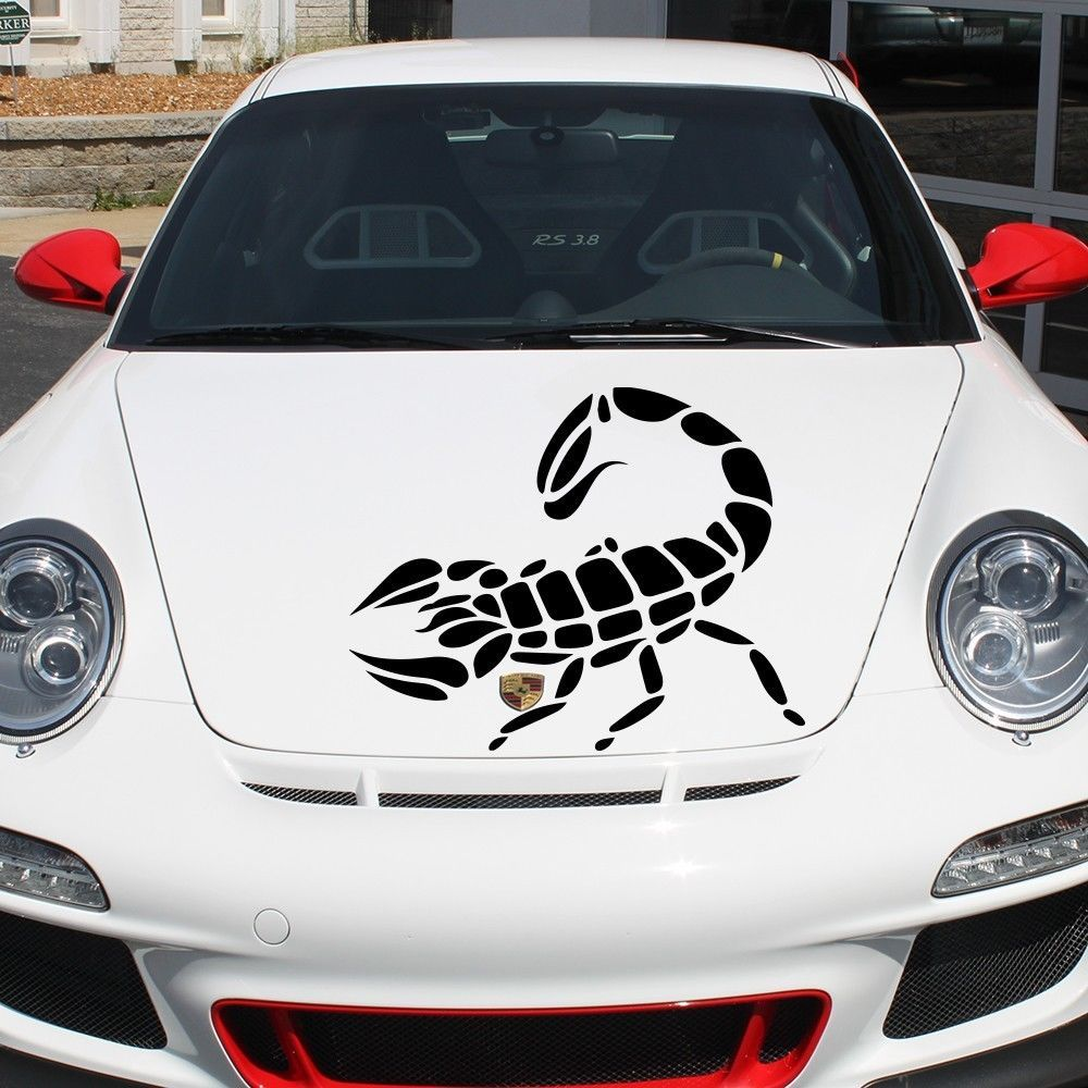 Car Hood Decal Scorpion Spider Predator Murals Insect Art Tattoo - Best automobile graphics and patternsbest stickers on the car hood images on pinterest cars hoods