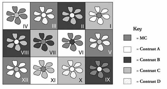 Bright Flower Rug | Pinterest | Trapillo y Costura