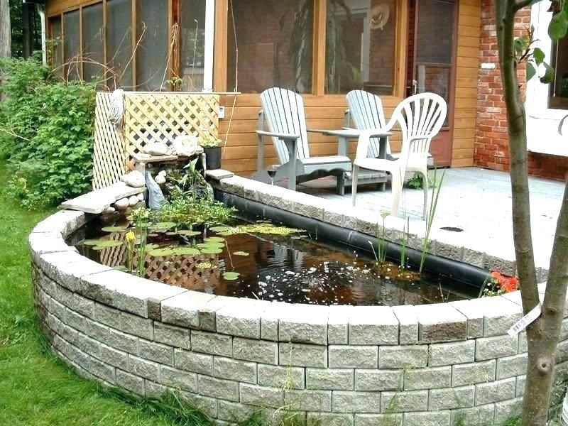 Patio Fish Pond Outdoor Tank Koi Clear Small Ponds Container Fish Ponds For Patios Patio Pond Ideas Home Fish Ponds Patio Pond Ponds Backyard Outdoor Ponds