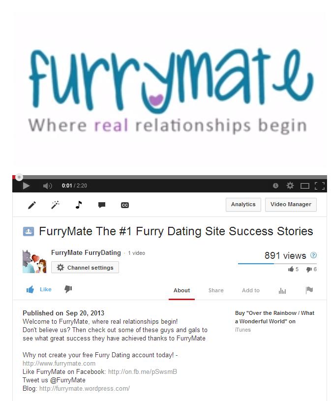 meet furries online