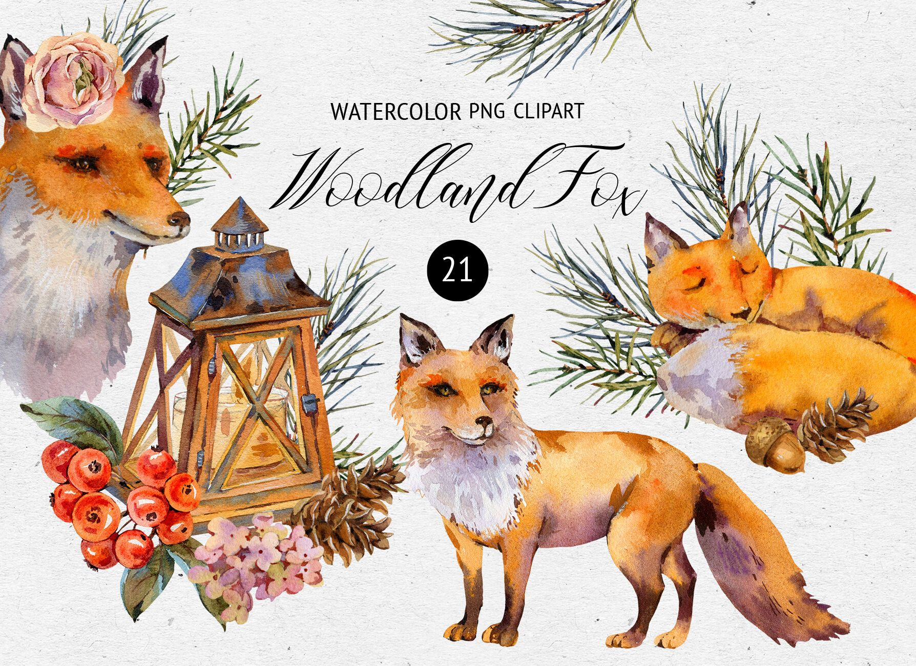 Watercolor Fox Woodland Clipart By Belusuab Thehungry