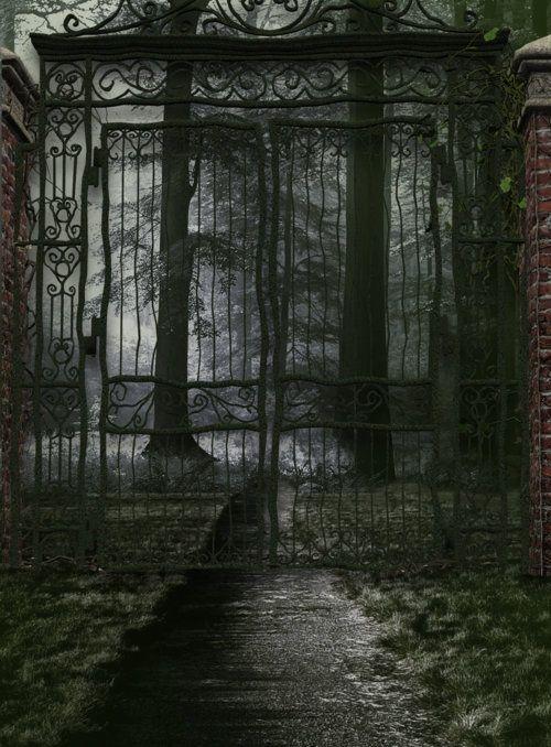 Haunted Woods Aesthetic