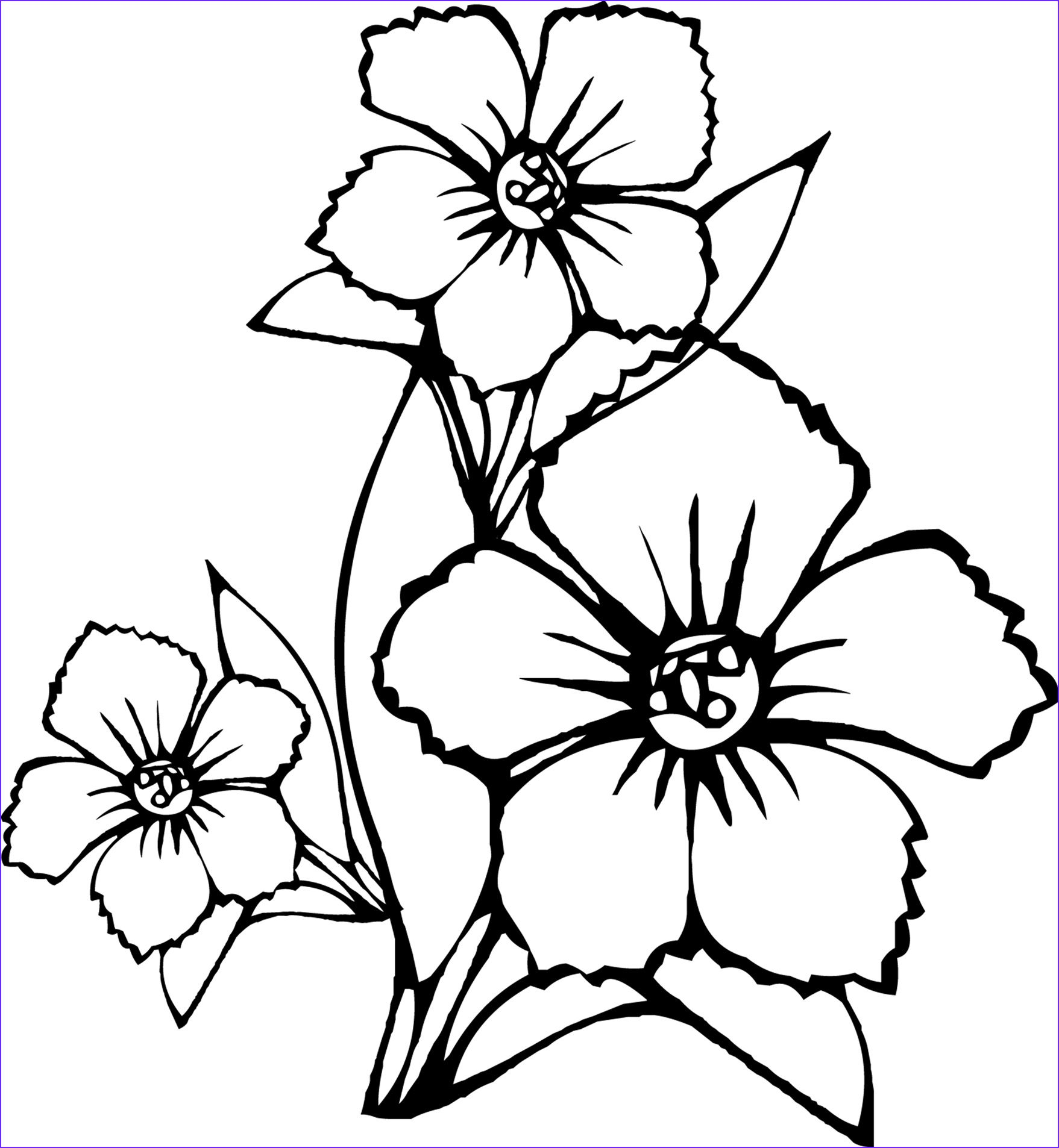 8 Beautiful Printable Flower Coloring Pages Images In 2020