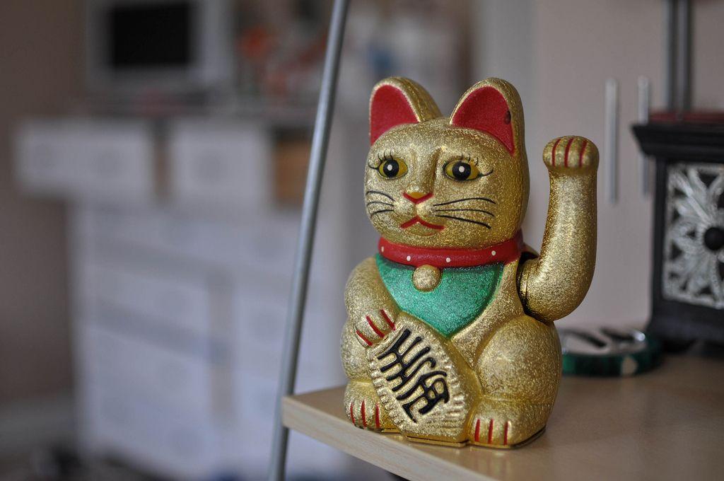козырь кот на удачу картинки после