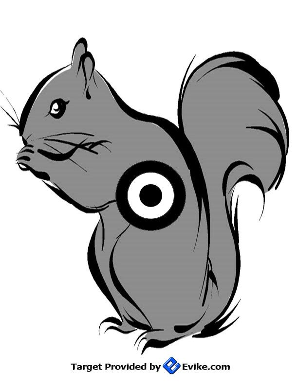 image regarding Printable Squirrel Target referred to as Pin upon Airsoft Guns