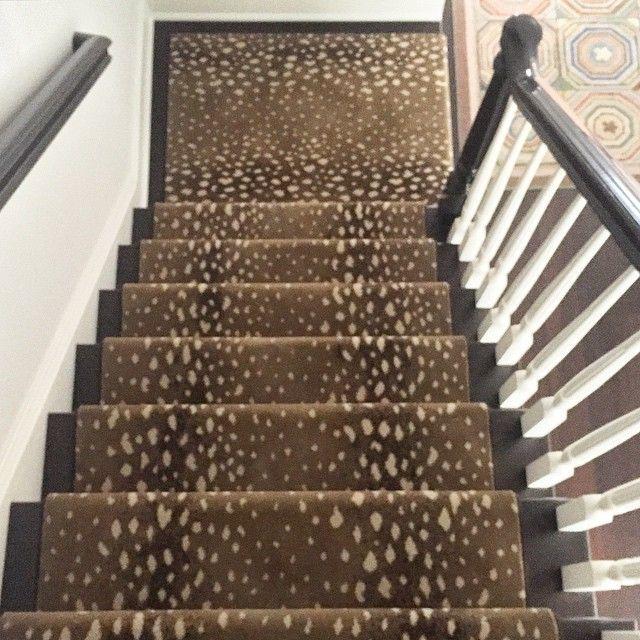 Best Stark Carpet Antelope Stairs Pinterest Staircases 400 x 300