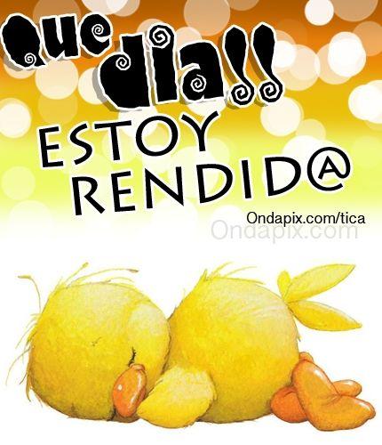Que Dia Estoy Rendido Cansancio Trabajo Funny Good Night Good