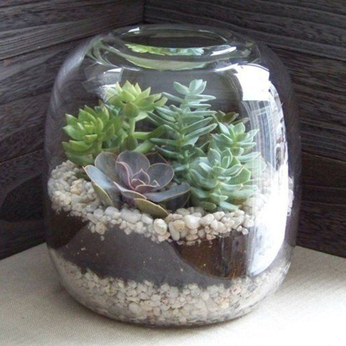 terrarium pour plantes tuto pour le faire et plus de 70 super mod les r cipients en verre. Black Bedroom Furniture Sets. Home Design Ideas