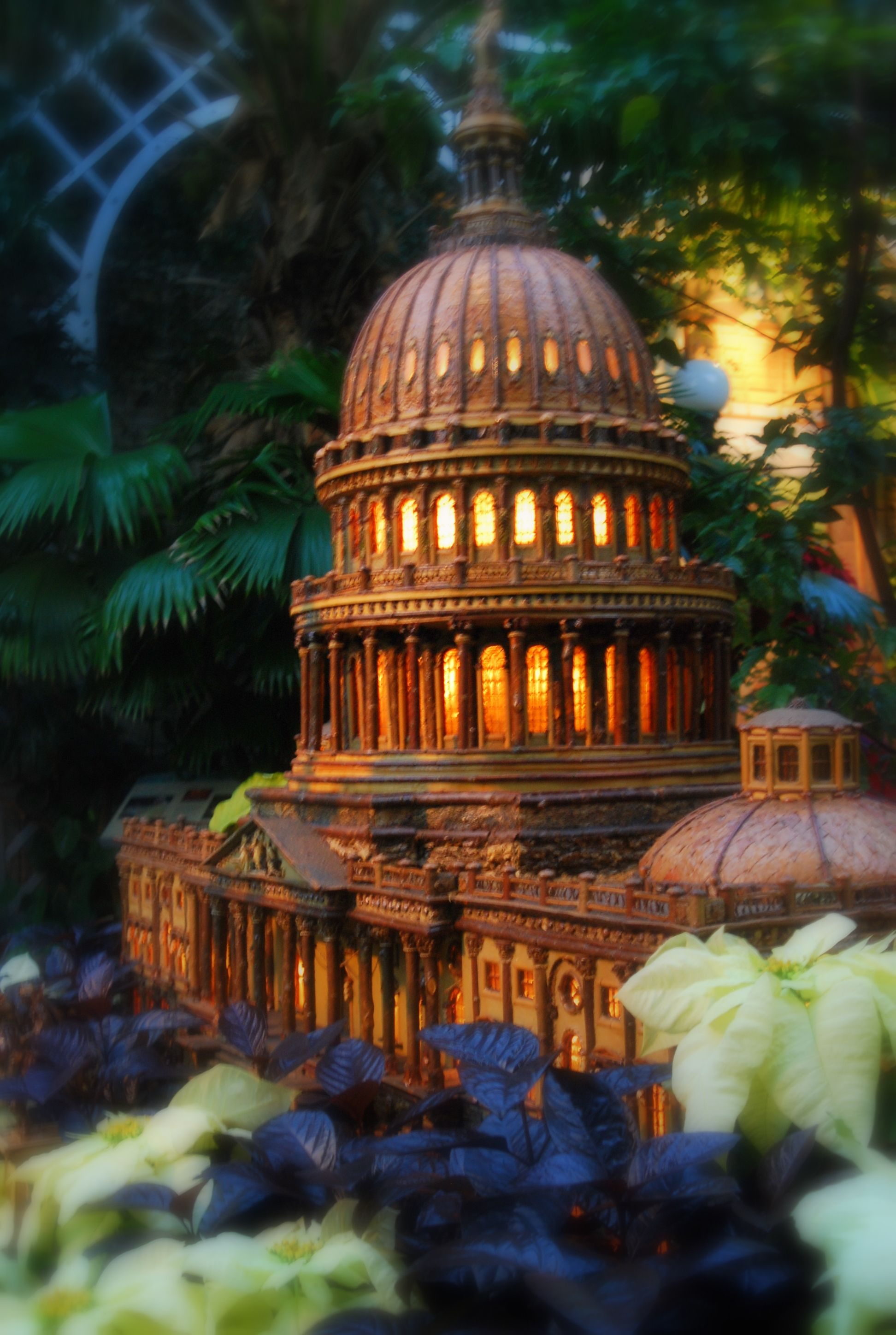 DC Botanical Garden (summer pic) Location: DC Cost: Free Attraction ...