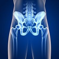 When more and more women with fibromyalgia began seeking care for pelvic pain syndromes, researchers from Oregon Health & Science University set out to examine the connection in a larger group of patients.