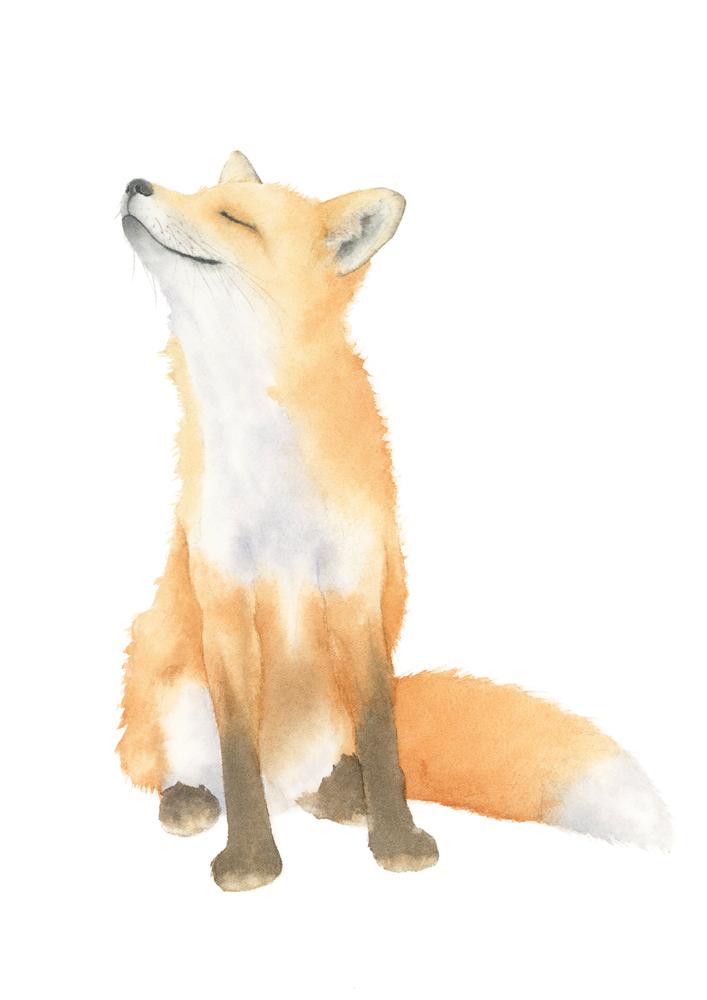 Fox Watercolor Art Print by hoolst – X-Small