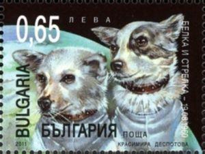 Belka and Strelka (1960)