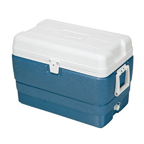Igloo Maxcold Cooler 50 Quart Icy Blue With Images Ice Chest Cool Box Cooler