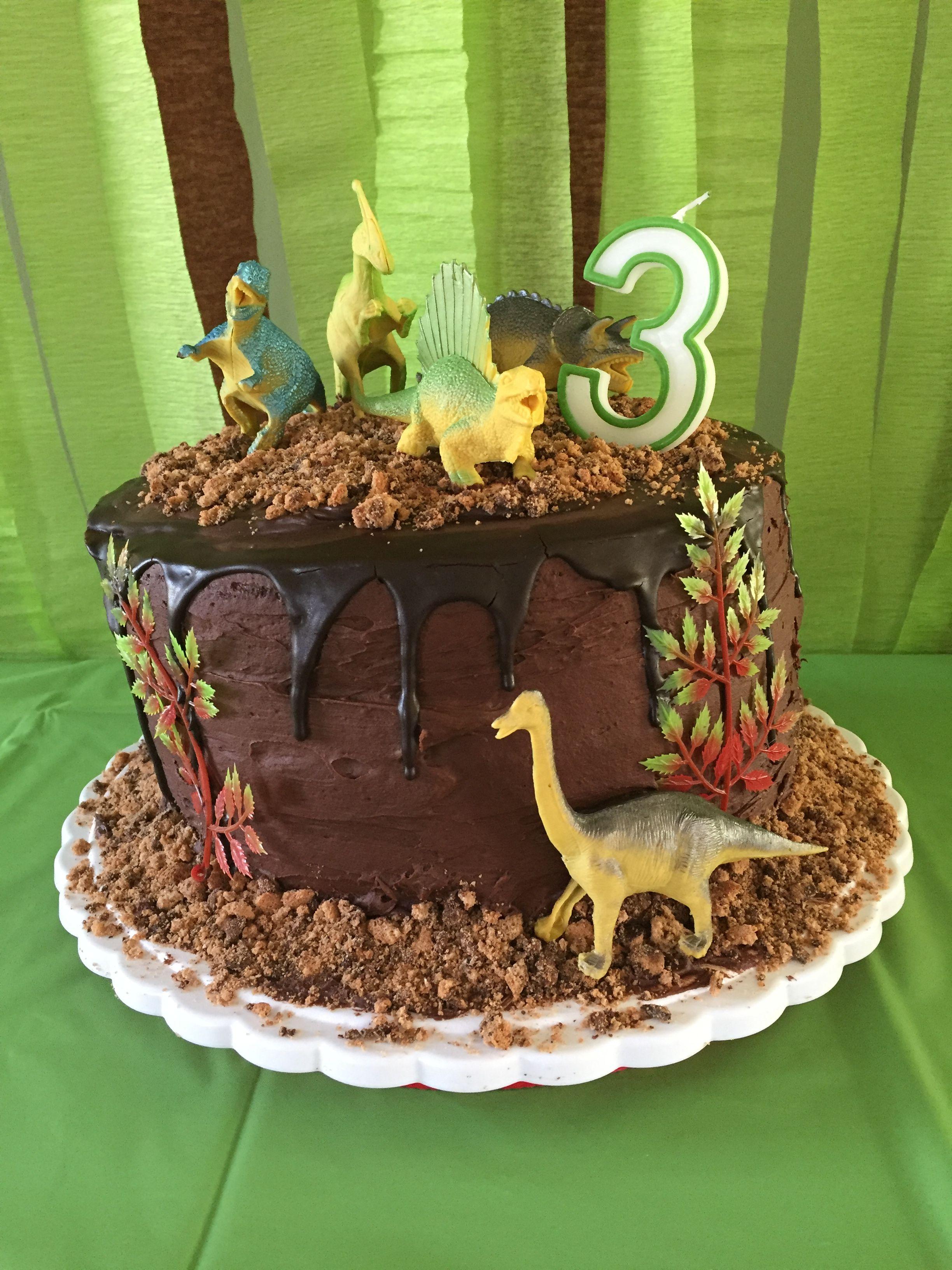 Stupendous Dinosaur Cake Dinosaur Birthday Cake Diy With Images Personalised Birthday Cards Paralily Jamesorg