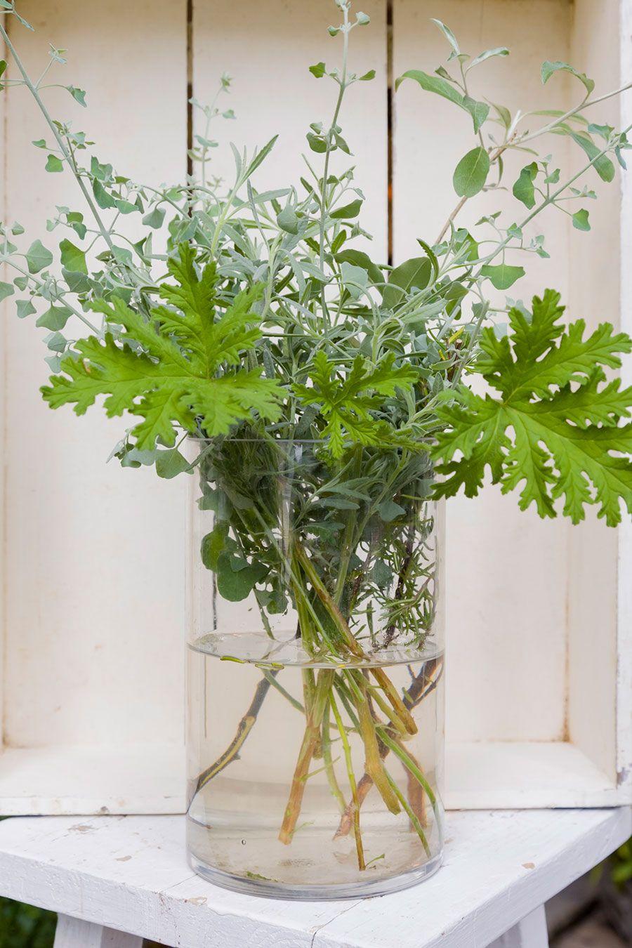 植物の力を生かすアイディア 3虫除けキャンドルとサシェを作る