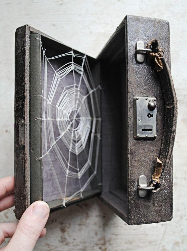 Nylon cobweb in a case -- Mister Finch.