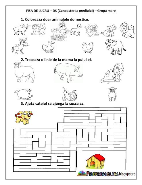 Planse De Colorat Si Fise Pentru Copii Pracovné Listy