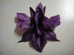 How to make origami orchid instructions easy and advanced origami how to make origami orchid instructions easy and advanced origami folding instructions diagrams range from 8 steps to 37 steps also find origami mightylinksfo