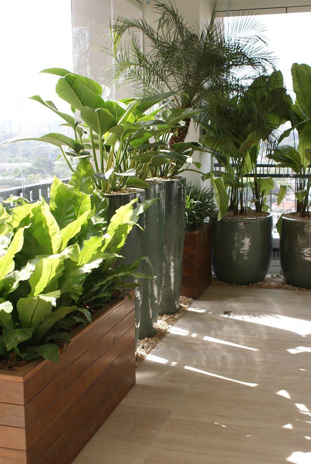 Vasos vietnamitas na sala pesquisa do google decora ao - Hangepflanzen garten ...