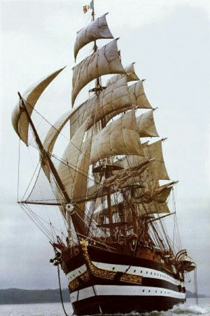 Pin By Mustafa Kemal On Tekne Pinterest Sailing Ships And Boating Ship Diagrams Boatsailing