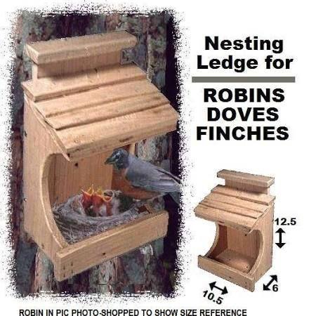 Dimensions Of A Dove Nesting Box Google Search Bird House Kits Bird House Plans Bird House Feeder