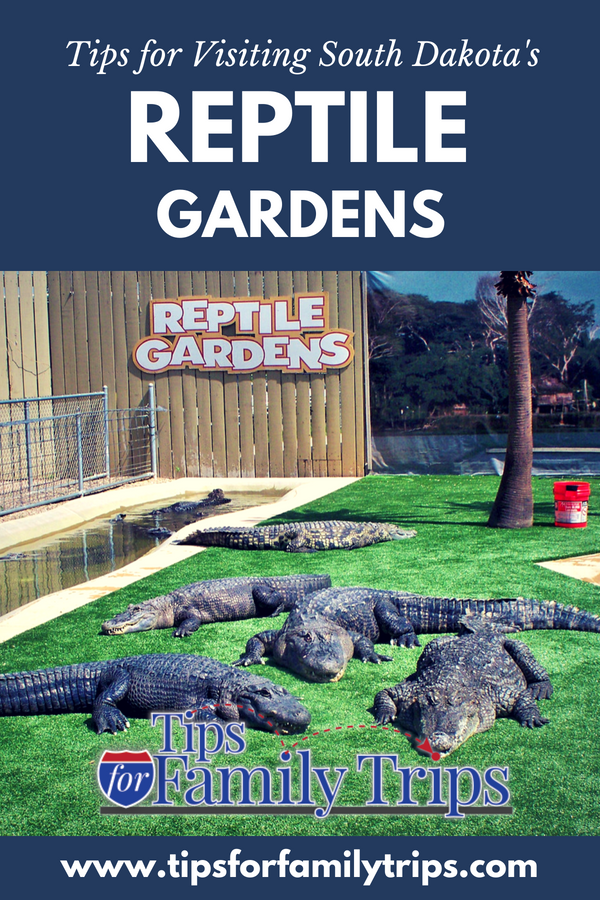 How Long Does Reptile Gardens Take